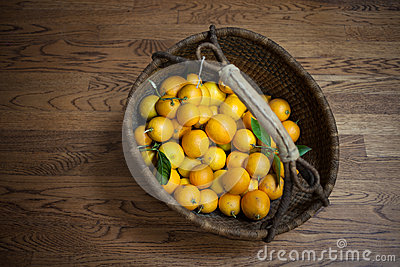 Basket of Fresh Citrus