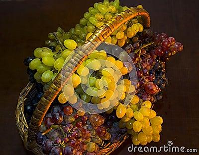 Basket full of grapes