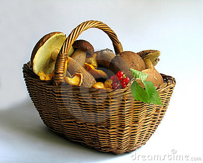 Basket full of mushrooms and berries