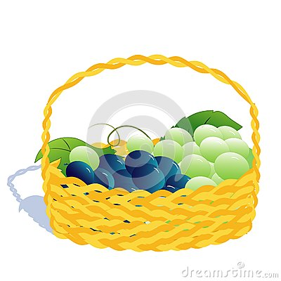 Basket with grape