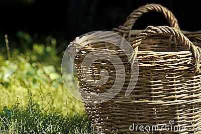 Basket on a grass