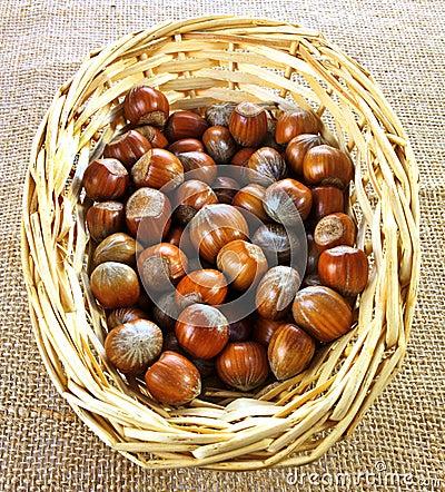 Basket of hazelnuts