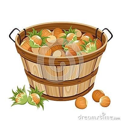 Basket with hazelnuts.