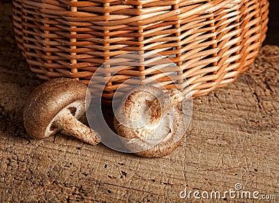 Basket and mushrooms