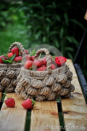 Free Basket Of Fresh Strawberries On A Background Of A Green Garden And Tree Branches Stock Image - 104879031