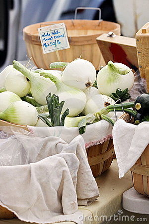 Basket of Onions
