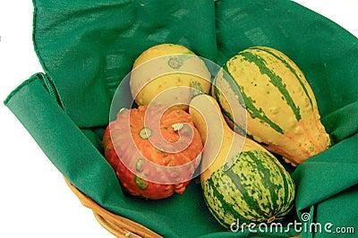 Basket of ornamental squash