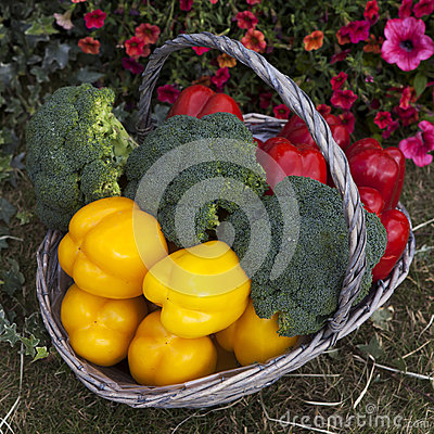 Basket with pepper