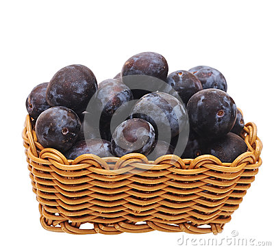 A basket with plums