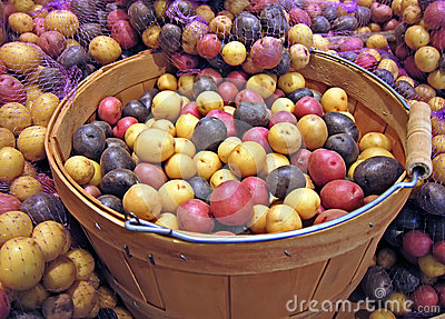 Basket of Red, White and Blue Potatoes