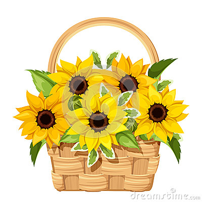Free Basket With Sunflowers. Vector Illustration. Stock Images - 68436124