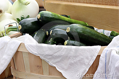 Basket of Zucchini