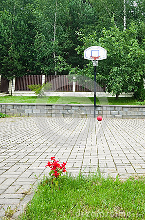 Basketball hoop summer
