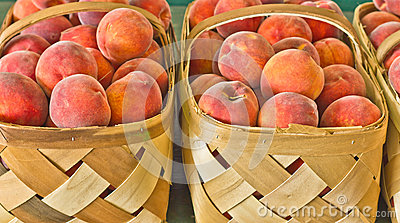 Baskets of Fresh Ripe Peaches