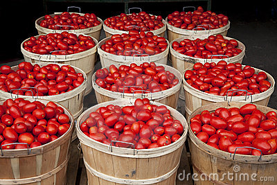 Baskets full of tomatoes