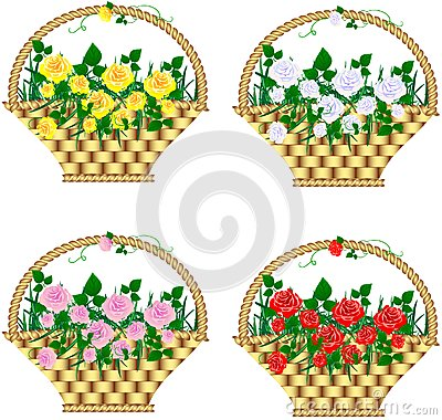 Baskets with roses