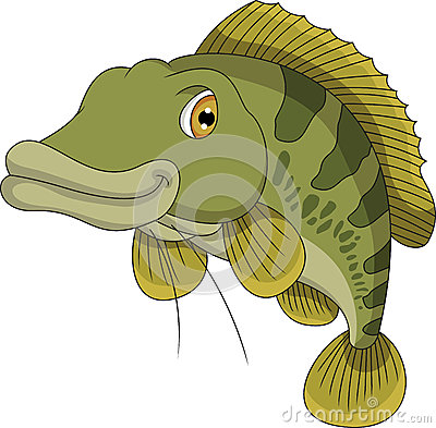 Bass fish cartoon