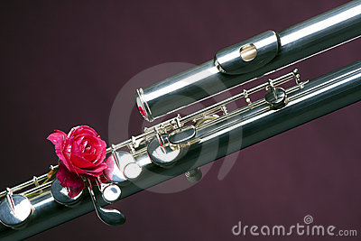 Bass Flute Rose Isolated on Purple