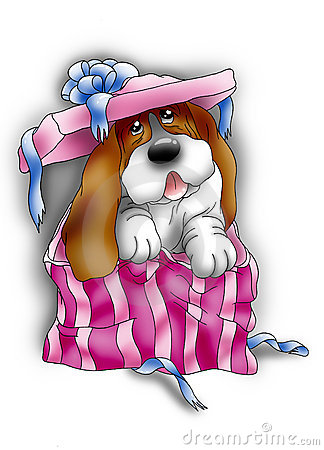Basset hound in a gift pack