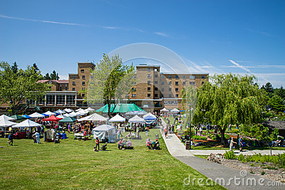 Bastyr University Herb and Food Fair view from hillside Editorial Stock Photo