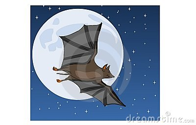 Bat on Moon