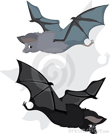 Bat in two variants, cartoon