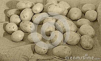 Batatas e saco