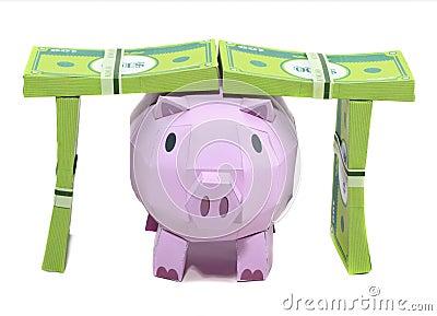 Batería del cerdo con el billete de banco