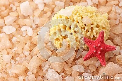 Bath salt, sponge and starfish