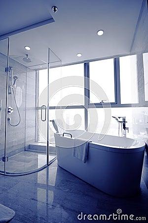 Free Bathroom Royalty Free Stock Image - 21284516