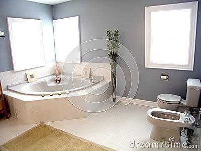 Bathroom 41