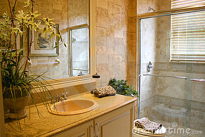 Bathroom Deluxe