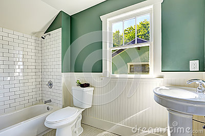 Bathroom interior with white and green wall trim