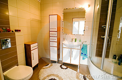 Bathroom shower interior