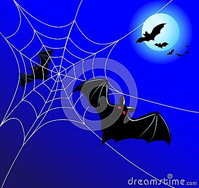 Bats and a web