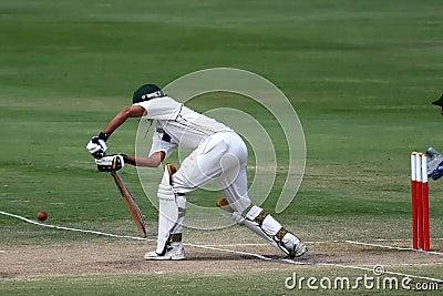 Batsmansyrsa