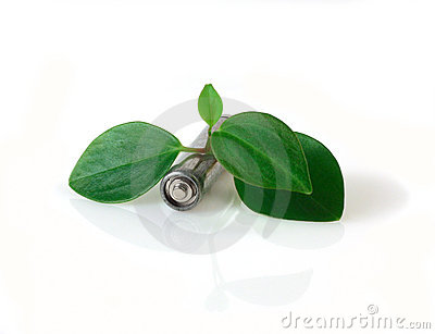Battery and green leaves