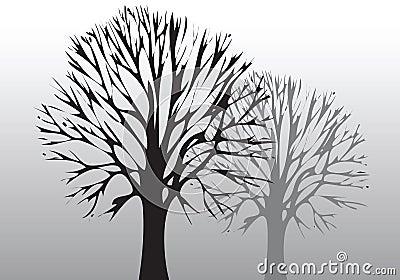 Baum und Umgebung