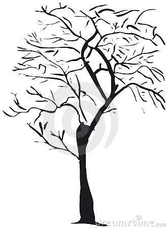 Baumschattenbild