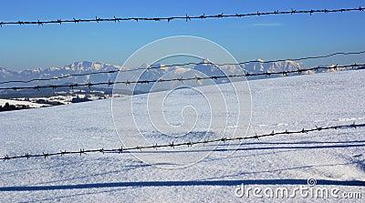 The Bavarian Alps