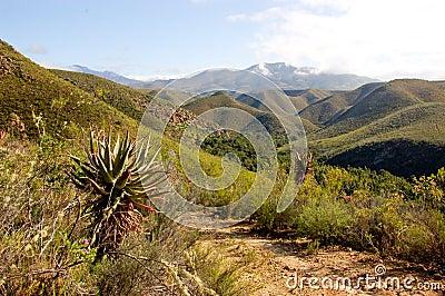 Baviaanskloof Mountains