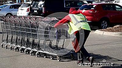 BAXTER, MN - 29-ОЕ МАРТА 2019: Сопровождающее лицо корзины Costco нажимает тележки назад для того чтобы хранить от загона парковк видеоматериал