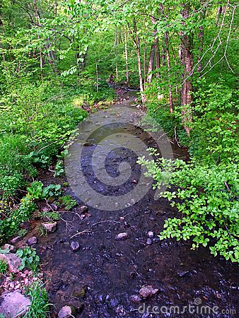 Free Baxters Hollow State Natural Area Stock Photos - 46984373