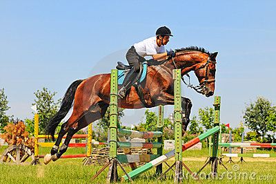 Bay horse and rider over a jump