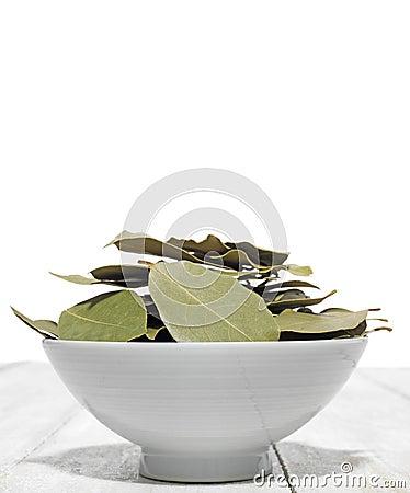 Free Bay Leaf Stock Image - 47894161