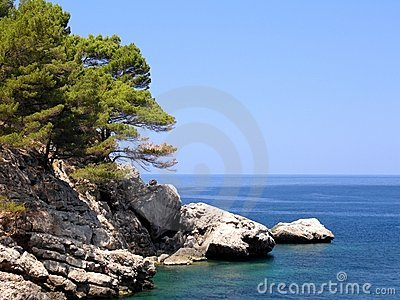 Bay Rocks
