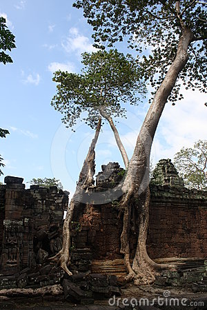 Bayon结构树