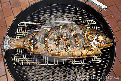 BBQ Salmon Fish