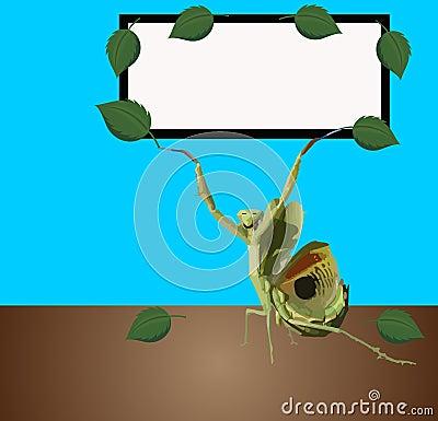 Be tecken för brädebönsyrsa