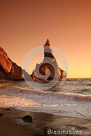 Free Beach Royalty Free Stock Photography - 6781947